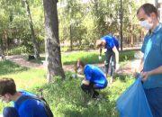 В Туапсинском районе волонтеры начали рейд против амброзии