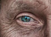 Сохранить зрение: офтальмолог назвала полезные для глаз продукты