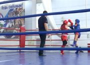 В Краснодаре прошли соревнования на Кубок края по тайскому боксу
