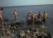 Первая помощь для дельфинов: как в Анапе обучают волонтеров