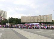 На Кубани отметили День флага РФ