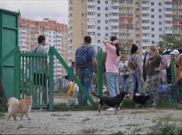 В Новороссийске открылась первая площадка для выгула собак