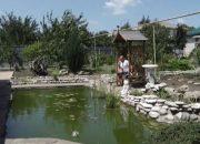 Семья из Новокубанского района на месте бывшей свалки создала сад