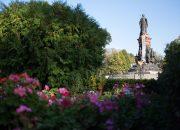 Краснодарцев пригласили на «Романтические прогулки»