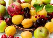 На Кубани собрали около 30 тыс. тонн фруктов
