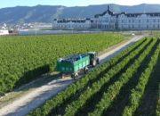 «Деловые факты»: компания по производству вина «Шато де Талю»