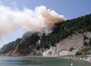 Площадь лесного пожара в Туапсинском районе составила 0,5 га