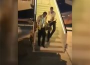 Дебошир из севшего в Краснодаре самолета пытался головой разбить иллюминатор