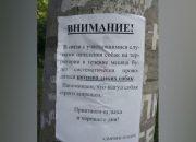 В Краснодаре полиция ищет того, кто разместил объявления о потраве собак в парке