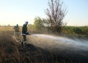 Под Анапой потушили горящую траву на площади 300 кв. метров