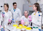 Воспитанники «Сириуса» предложили новый способ утилизации отходов в металлургии