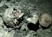 СК Адыгеи: найденным в районе ТЦ «Мега» черепам и костям не менее 50 лет