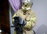 Жительнице Новороссийска потребовалась помощь спасателей из-за кошки с котятами