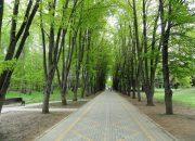 Краснодарцы смогут посетить экскурсию по Ботаническому саду