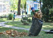В Краснодаре в общегородском субботнике приняли участие более 100 тыс. человек