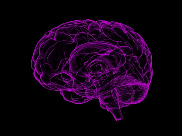 искусственный мозг начал думать