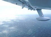 Ученые РАН подсчитают популяцию дельфинов в Черном море с самолета-амфибии