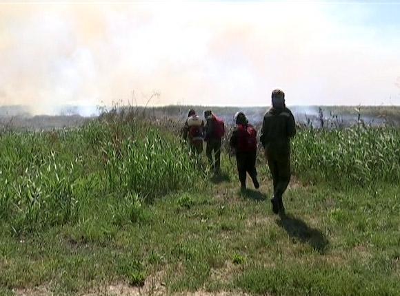 Добровольные пожарные Кубани за август потушили 15 природных пожаров