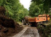 В Сочи рабочие весь день убирали завал на дороге после ливня
