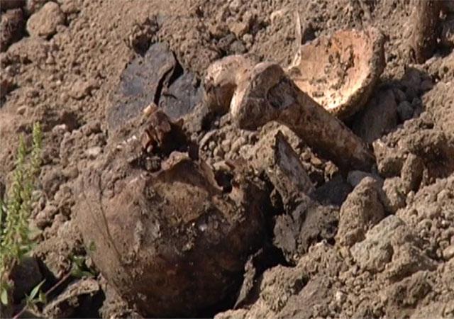 Найденные в районе ТЦ «Мега» останки привезли с еврейского кладбища Краснодара