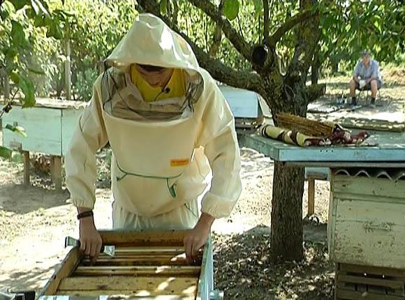 Школьник из Крымского района стал лучшим на российском конкурсе пчеловодов