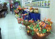 В честь юбилея станицы Каневской местные мастера изготовят 225 тыкв