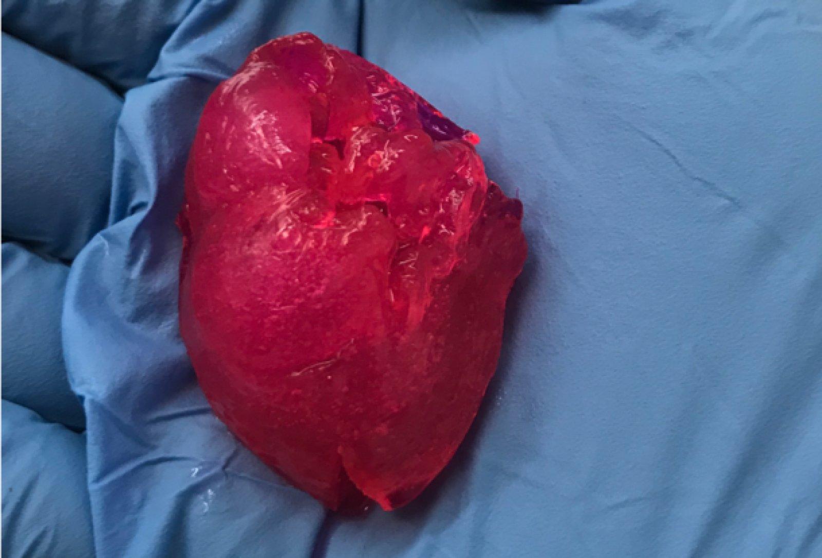 Чикагские биотехники напечатали человеческое сердце на 3D-принтере