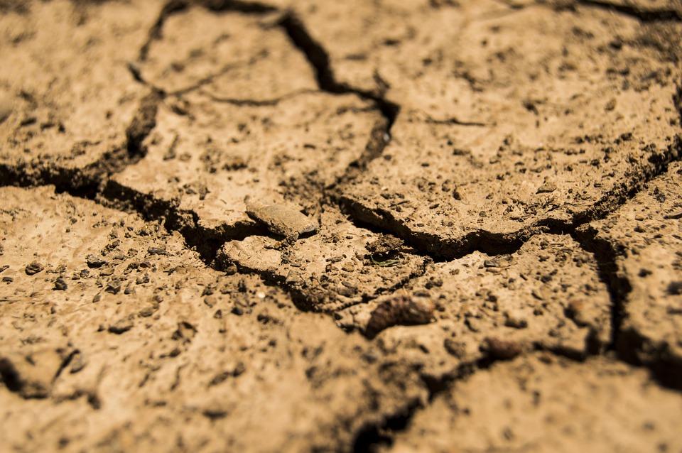 засуха в австралии