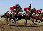 В «Атамани» на фестивале «Казачья слава» проведут скачки на приз губернатора