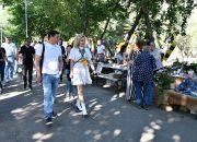 Фестиваль «Стереопикник» в Краснодаре 7 сентября посетили более 5 тыс. человек