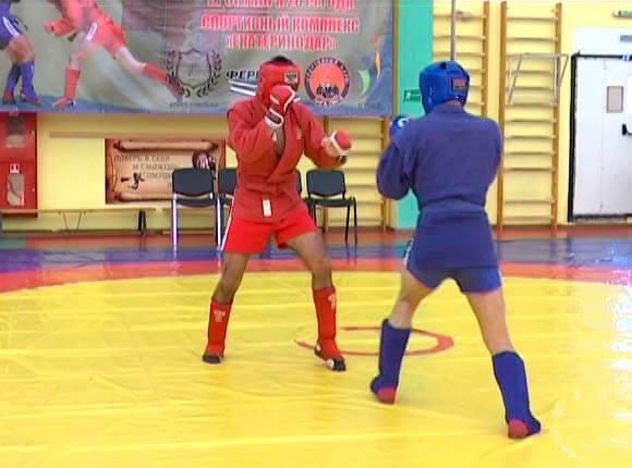 В Краснодаре завершился чемпионат города по боевому самбо