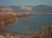 В Новороссийске экологи призвали спасти Суджукскую лагуну от исчезновения