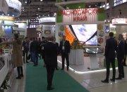 На московской выставке «Золотая осень» Кубань представила каравай весом 74 кг