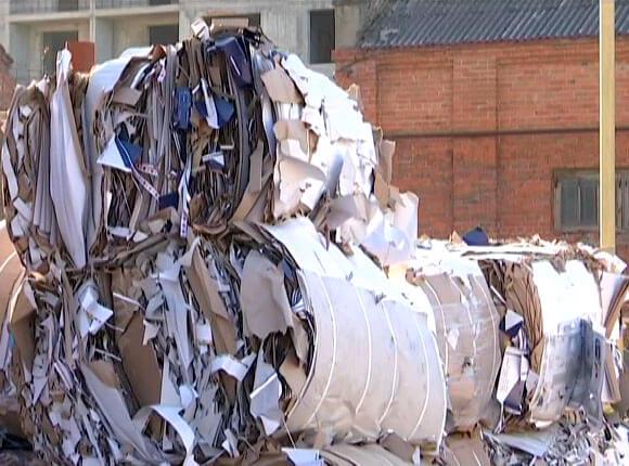 Сотрудники телеканала «Кубань 24» сдали макулатуру на переработку