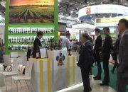 Как Кубань показала себя на агропромышленной выставке «Золотая осень» в Москве