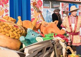 Туристическая Кубань: фестивали, экскурсии и праздники ноября