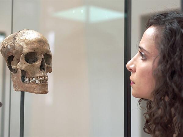 Воинственная валькирия: ученые воссоздали лицо женщины-викинга