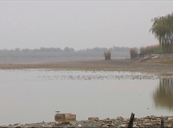 Уровень воды в реке Тимашевского района достиг критически низкой отметки