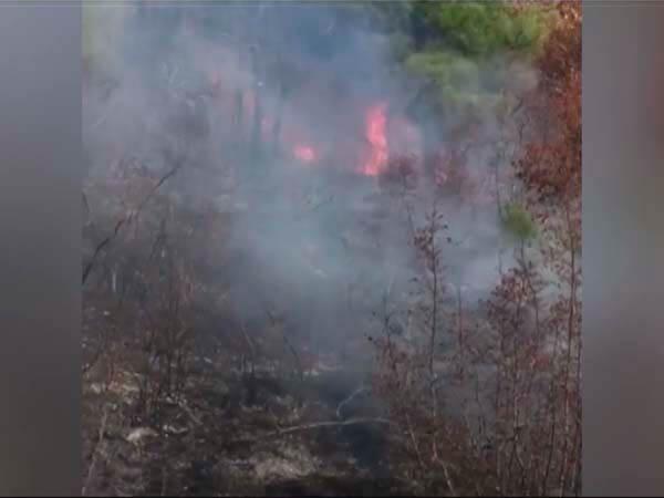 Как ликвидировали лесной пожар в Северском районе