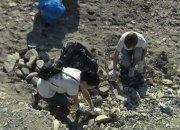 Волонтеры Туапсинского района объединились, чтобы очистить берег бухты Инал