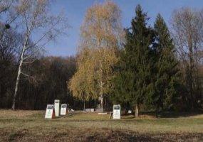 Расстрел на Михизеевой Поляне: в Мостовском районе вспомнили трагедию 1942 года