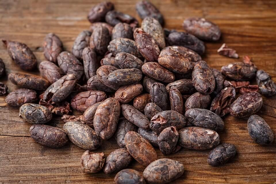 Какао: нервные клетки восстанавливаются!