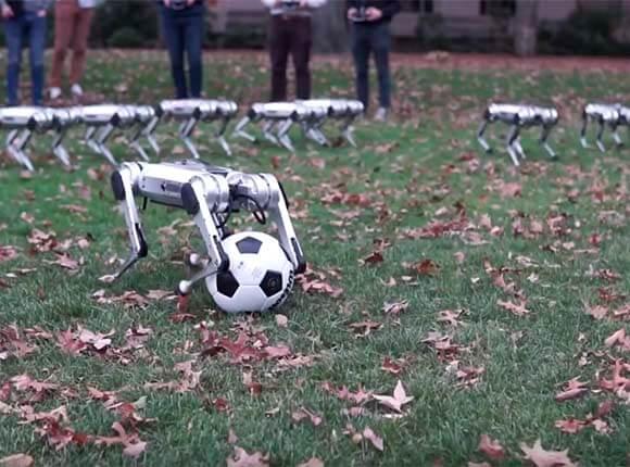 роботы-собаки, ученые