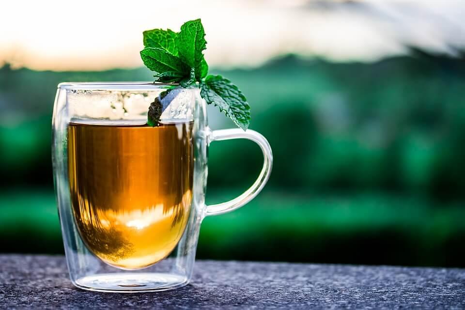 ГМО в натуре: чай, табак, хмель и другие продукты, трансгенные от природы