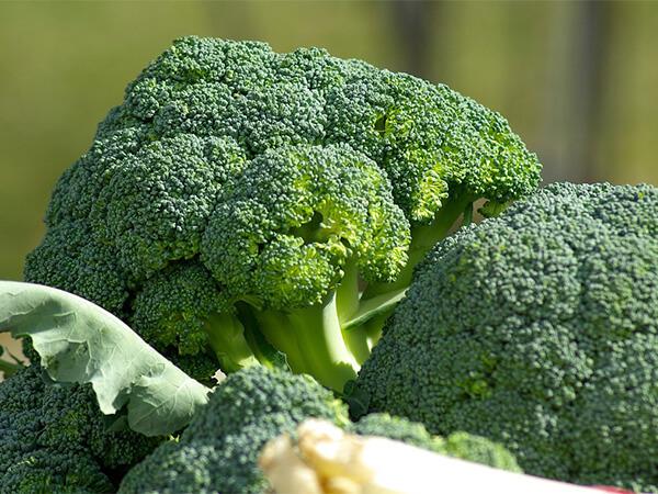 цвет овощей, проблемы со зрением