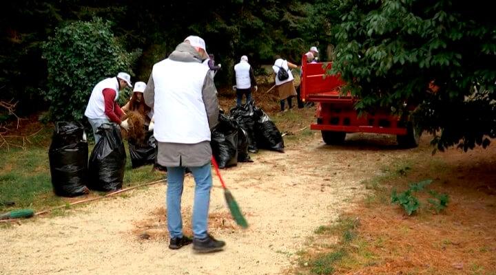 В Сочи в рамках международного форума добровольцев прошла экологическая акция