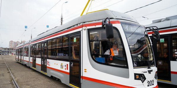 В Краснодаре для большинства жителей любимым видом транспорта стал трамвай