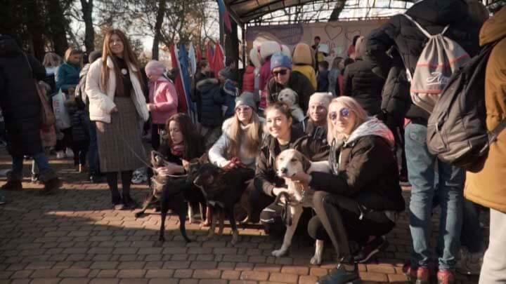 В Новороссийске устроили собачьи бега