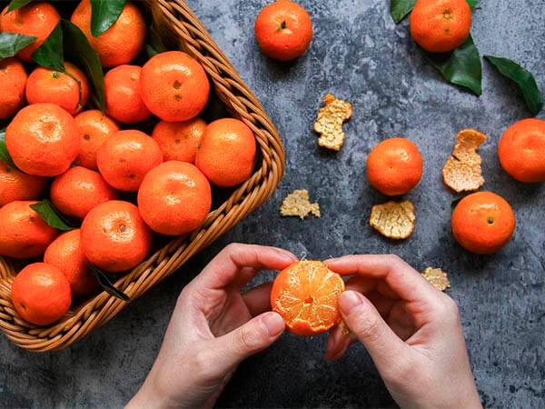 Готовь сани летом: какие фрукты к новогоднему столу можно купить заранее
