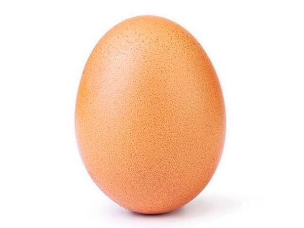 Куриное яйцо, «Игра престолов», Нотр-Дам: Twitter подвел итоги 2019 года